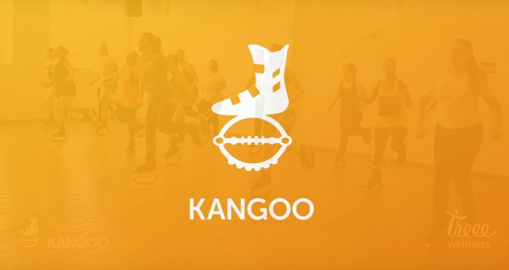 Aula de Kangoo